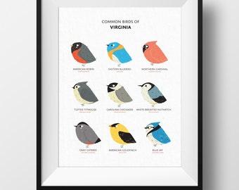 Common Birds of Virginia Art Print