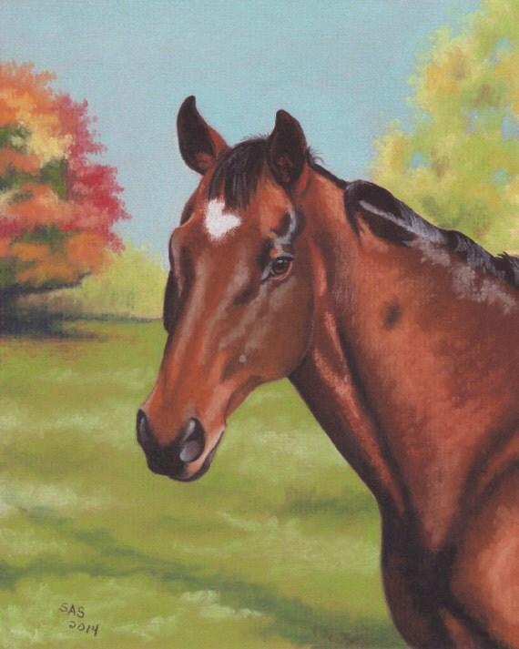 original PET PORTRAIT of your Horse 8x10