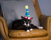 Happy Birthday Cat Hat