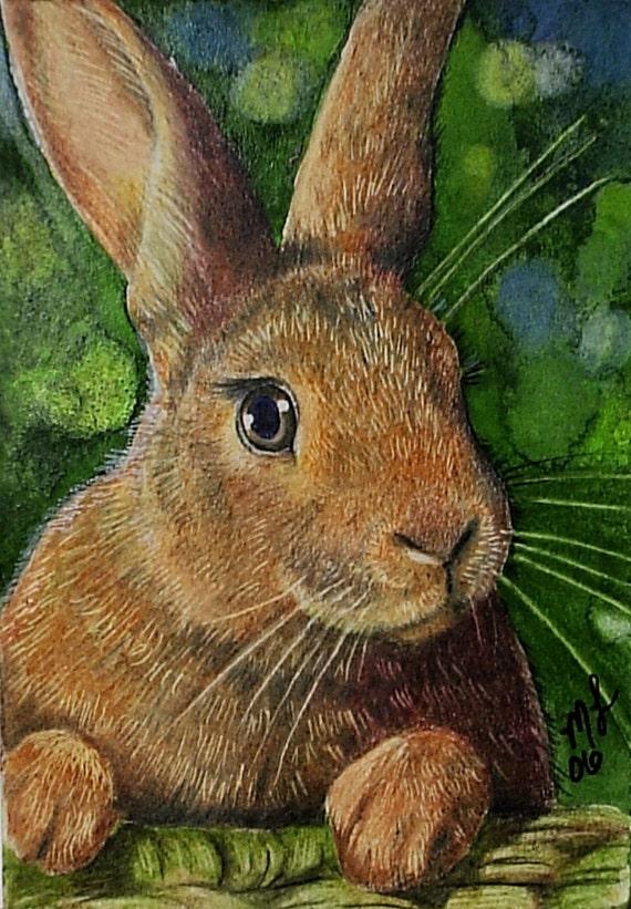 Cute Bunny Rabbit Miniature Art by Melody Lea Lamb ACEO Print