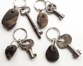 Fossil Lake Erie Beach Stone Key Rings Sterling Key Chain  - Rockhound