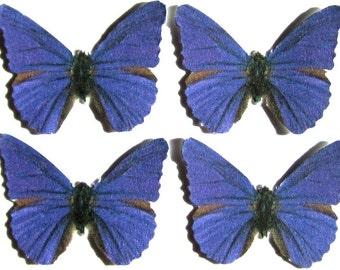 24 Royal Purple Butterflies for DIY weddings, butterfly baby showers, DIY butterfly school kits, butterfly wall décor, stocking stuffers