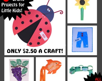 KIDS CRAFT KITS - 6 Craft Kits for Little Kids - All Supplies Included! - Learn Colors