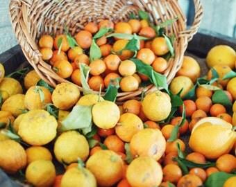 Lemons photograph fresh citrus oranges yellow fruit basket kitchen decor dining room wall art 'Citrus Basket'