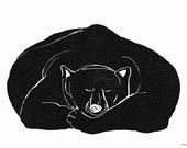 Extra large poster Bear asleep
