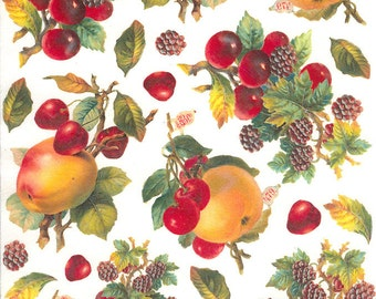 Italy Rice Paper Decoupage Sheet Vintage Images Cherries And Fruit  RCP-GS-02