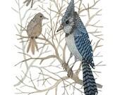 Blue Jay Print, bird art, winter birds, blue birds, giclee art  print, watercolour art, woodland watercolor