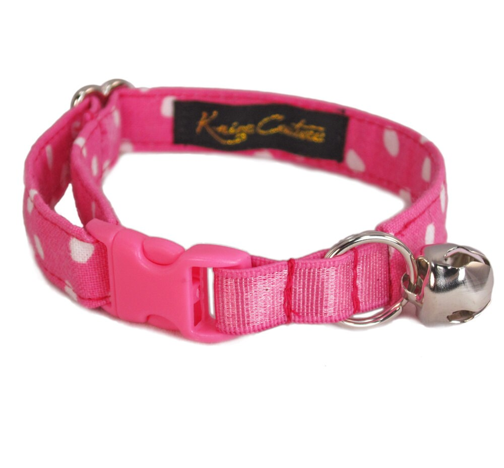 best cat leash and harness