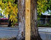 White DIY GROWTH CHART Ruler Kit - Make Your Own Wooden Ruler Children's Height Growth Chart - White