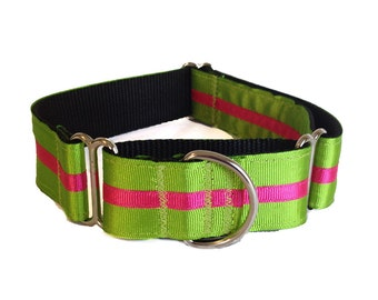 Green and Pink Striped Martingale or Buckle Collar