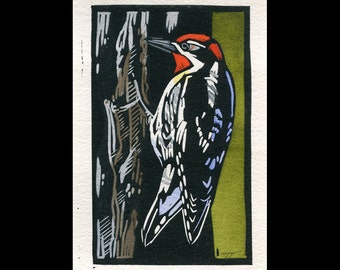 Red-naped Sapsucker hand painted linocut