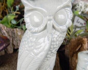 Ceramic Barn OWL  Celadan Figurine  Woodland Terrarium Animal Big Eyed owl.  Ready to ship Items in my shop!
