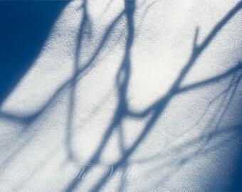 Fine Art Print, Nature Photography, Winter Photo, Rustic Decor, Snow Photograph, Adirondacks, Shadows, Light, Tree Branches, White, Blue