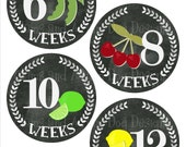 Weekly Baby Bump Pregnancy Stickers- Belly Bump Stickers- 20 stickers fruit and vegetables birth announcement- pregnancy belly decal- BBP135