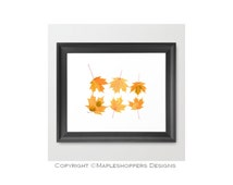 Original Reproduction of Real Pressed Maple Leaves - Fall Maple Leaves Wall Art - DIY You Print and Frame - 8x10 - JPEG - Instant Download