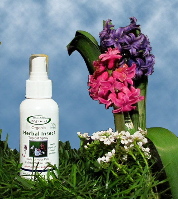 Organic Herbal Insect Relief Spray 4oz