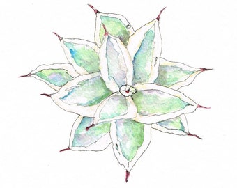 Agave 2. Watercolour Illustration. Pen and Ink Painting Original Art
