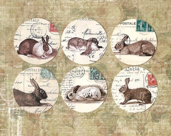 Stickers, French Rabbits, Sticker Seals, Les Lapins