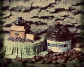 Mocha Facial Scrub. Chocolate Coffee Organic Face Scrub - yummy delicious exfoliant for face