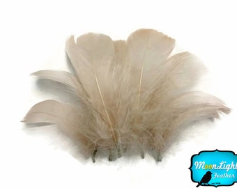 1/4 lb - IVORY Goose Coquille Loose Feathers Wholesale (bulk) : 3760