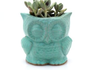 Ceramic owl  Planter succulent planter pot  utensil holder pensil holder