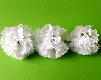 10  White Baby Carnations
