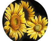 Envelope Sealers-Sunflower