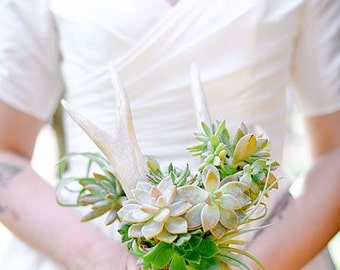 Bridal bouquet, succulents on an antler shed