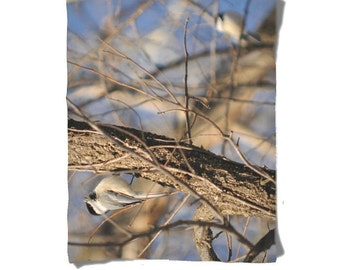 Fleece Blanket - Chickadee Bird - Tree Branches - Decorative Fleece Blanket - Baby Blanket - Medium Large Blanket
