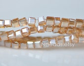 200 beads- Faceted Glass Cube, 2mm Tiny Faceted Crystal beads, Sparkly Gold Champagne- (#FZ02-01)