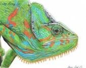 Veiled Chameleon Portrait - 5 x 7 Fine Art Print - By Laura Airey Le