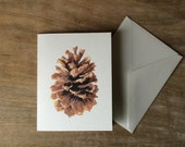 Pine Cone Notecards - a watercolor woodland artist notecard set -