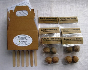 Mini herb garden seed bomb kit (READY TO SHIP)- Includes- 2 basil, 2 oregano, 2 parsley, 2 chives, 2 dill, and 2 cilantro- 12 seed bombs