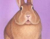 Rabbit Art - Rabbit Print  12 x 16 inch - 10% Benefits Animal Charities