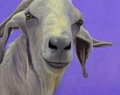 Goat Print - Goat Art - Funny Goat Art - Funny Animal Art - Godly Goat - 10% Benefits Animal Charity