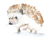 Hedgehog Watercolor Painting Giclee Reproduction - 6 x 4 in -- Nursery Art  -- Fine Art Print
