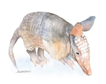 Armadillo Watercolor Painting Giclee Reproduction - 4 x 6 - Fine Art Print