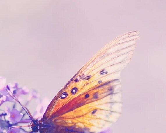 butterfly nursery art, purple wall art, butterfly picture, butterfly print, girl wall art butterfly, wall decor girl, purple wall decor