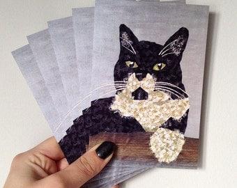 Cat Postcards - Two Socks