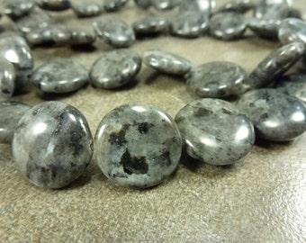 HALF OFF 10pc. Larvikite Gemstone Beads 18mm Coins