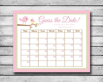 Guess the Date | Pink Birds | Baby Shower Game | Due Date Calendar | Digital File