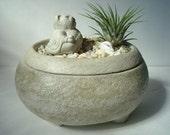 Cat Buddha Sculpture Zen Garden Air Plant Keepsake Stone Bowl