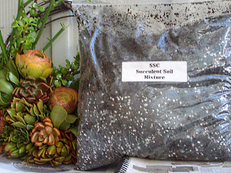 Succulent plant soil mixture for Is soil a mixture
