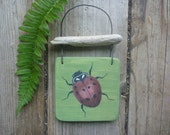 Ladybug - Driftwood Wall Hanging - Hand Painted Recycled Wood Wall Art
