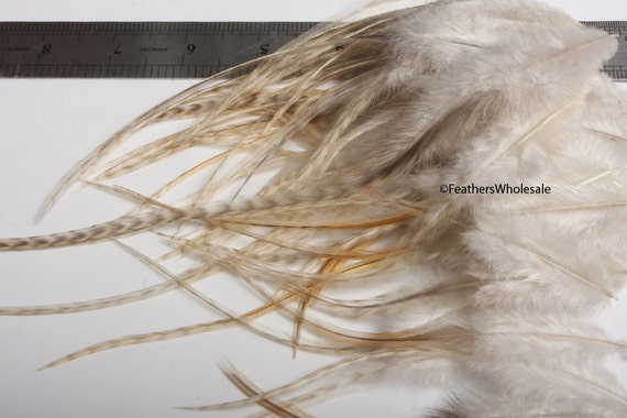 50 bulk natural feathers for crafts honey by featherswholesale for Natural feathers for crafts