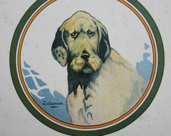 Griffon Vendeen  Dog Print Vintage French