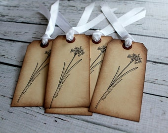 Vintage Inspired Tags - Paperwhite Narcissus - Set of 5