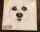 Maltese Puppies.  A beautiful hand painted portrait for your perosnal use.