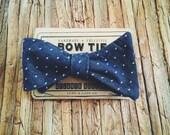 Bow Tie || Indigo Dot