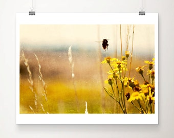 bumble bee photograph insect photograph animal photography nature photography gold home decor summer photograph bee print insect print